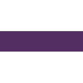 ben-bridge-logo