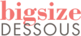 bigsize-dessous-logo