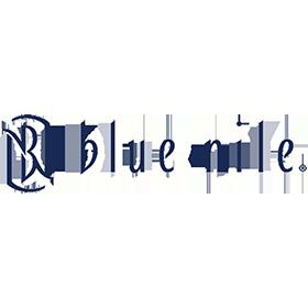 bluenile-logo