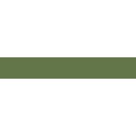 bonanza-logo