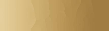 bryan-anthonys-logo