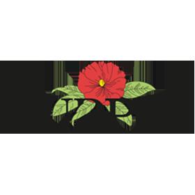 burpee-logo