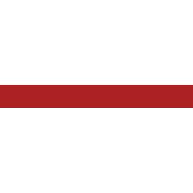 business-standard-in-logo