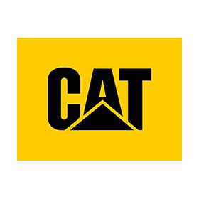 catfootwear-logo
