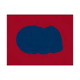 cea-br-logo