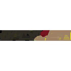 city-jet-logo