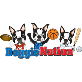 doggienation-logo