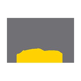 everlast-logo