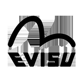 evisu-uk-logo