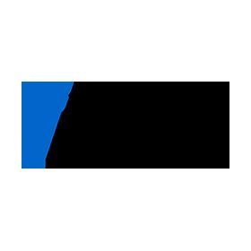 flevy-logo