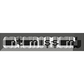 intimissimi-es-logo