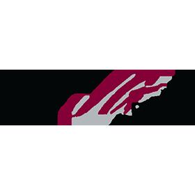 joegibbsracing-logo