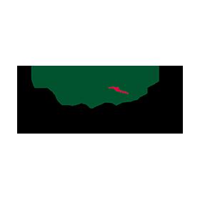 lacoste-mx-logo