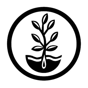 mountain-valley-seed-co-logo