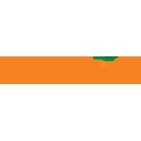 orangeonions-logo