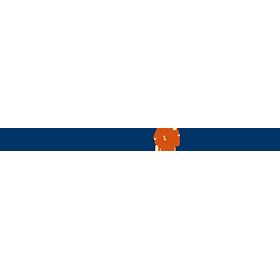 problemsolvers-logo