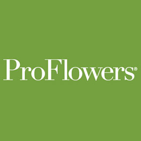 The Best Proflowers Coupons Promo Codes Black Friday Deals