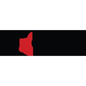 r1-concepts-logo
