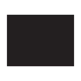 ronniefieg-logo