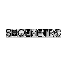 shoe-metro-logo