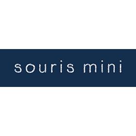 souris-mini-logo