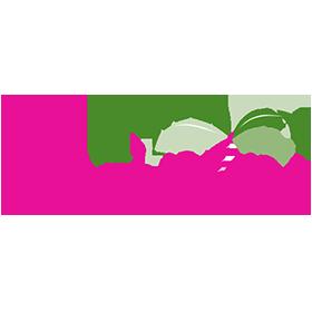 thepalmtreeboutique-logo