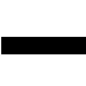 thevapestore-logo