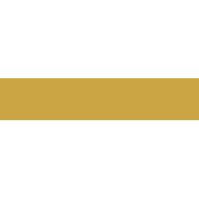 vix-logo