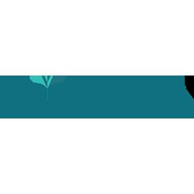 voylla-in-logo