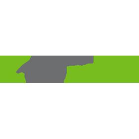 zoom-car-in-logo