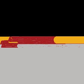 carousel-checks-logo